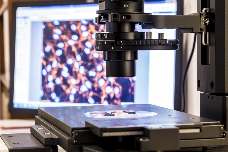 研究新发现:AFM悬臂可作为纳米机械传感器!