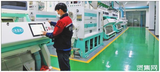 38道工序1小时筛选15吨,现代化生产给方正大米带来新变革