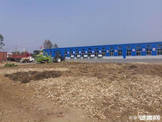 大连金普新区离田垃圾处理中心正式投用,为建设美丽乡村迈出更扎实的一步