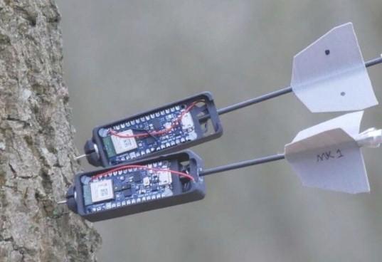 这种无人机可给树木安装传感器,监测森林环境和生态变化
