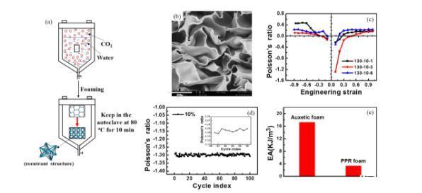 唐涛研究员团队:一种从聚合物树脂直接制备高性能拉胀泡沫的新方法