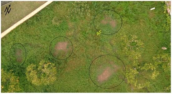 无人机是遥感技术不可或缺的一部分,可帮助搜寻失踪人员!