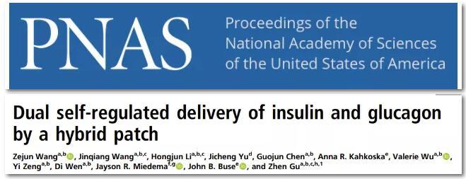 血糖调节新技术!顾臻团队发明智能胰岛素和胰高血糖素复合贴片