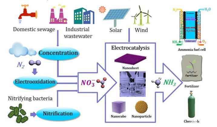 天津大學用納米片導電來制作硝酸根,更綠色更環保