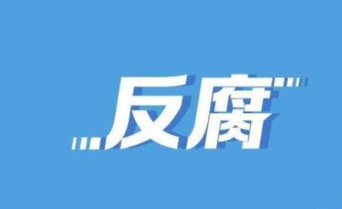 """國家能源局華中監管局原黨組書記、局長薛滸被""""雙開"""""""