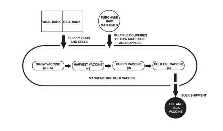 一文告诉你如何大规模的批量生产新冠疫苗