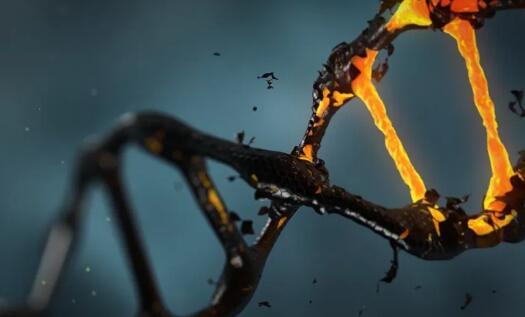 太震惊了!史上最安全基因治疗载体AAV,竟有潜在致癌性