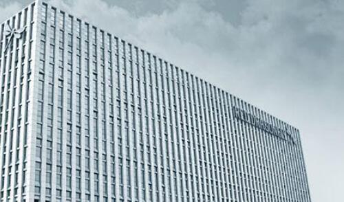 """红蜻蜓""""双11""""GMV突破8亿 打造数字化商业系统"""