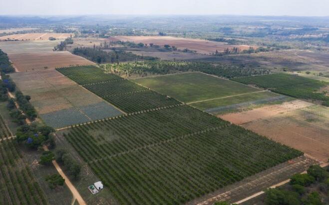农业用电将成为非洲太阳能最大输出方向