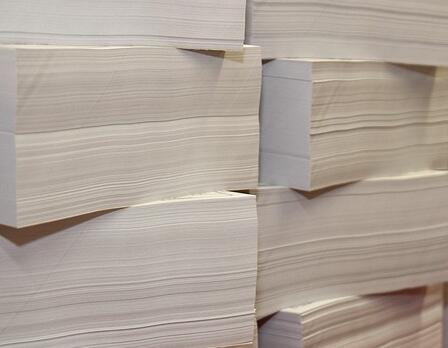"""""""船边直提""""助江西理文进口包装纸 通关时间缩短60倍"""