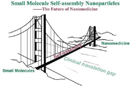中科院探索了一种跨过纳米药物临床传化困难鸿沟的新方法