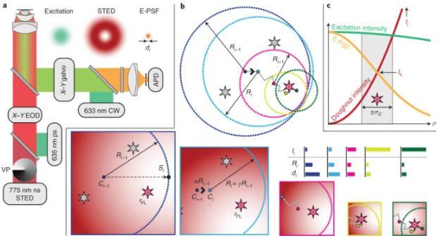 德学者开发了一种光学显微镜的新方法,可分辨纳米级的荧光分子