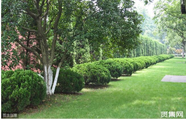 园林绿化工程施工技术研究,园林人必备