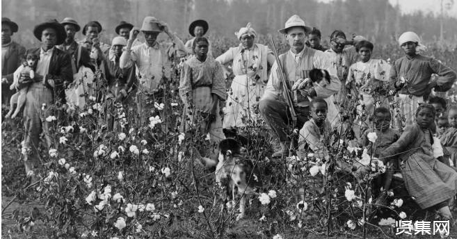 新疆棉花事件持续发酵,揭秘欧美为何总和新疆棉花过不去?