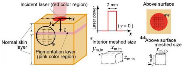 研究人员提出新的方法来了解激光加热时皮肤温度升高机制 增加安全性