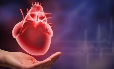 美国开发了血管内激光散斑成像技术,可表征主要的心脏病发作风险