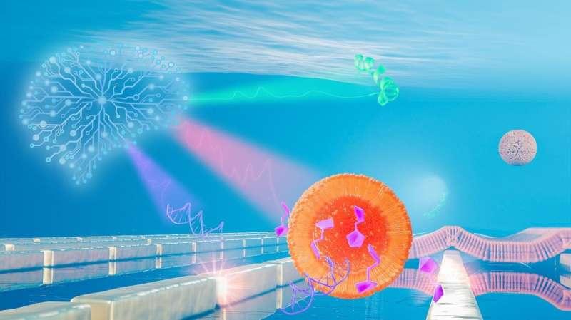 科学家开发出人工智能驱动的纳米传感器,可追踪各种生物分子