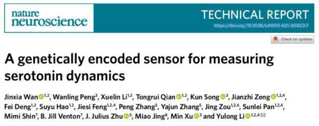 北大李毓龙团队开发新型荧光探针,可精确检测5-羟色胺动态变化