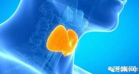 甲状腺挂什么科?甲状腺疼痛是什么病?