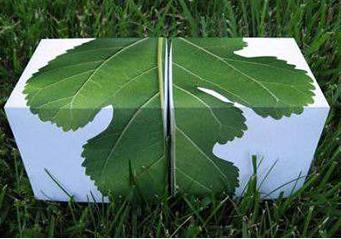 国家能源集团首推全生物可降解塑料 应对白色污染