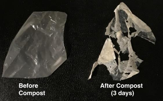 科学家设计酶活化的可堆肥塑料 可以减少微塑料的污染