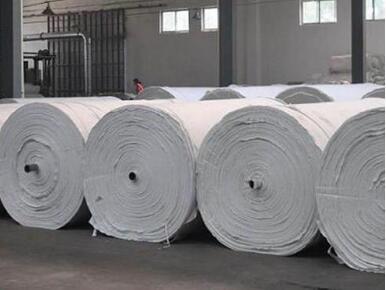 """""""聚酯品种产业座谈会""""在杭州举行,呼吁上市长丝期货"""