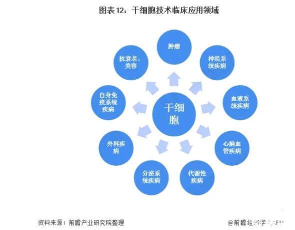 我国干细胞医疗产业发展现状和代表企业