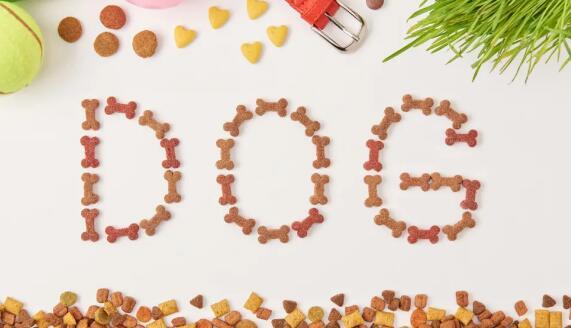 宠物食品原料的特性与加工过程中的变量控制