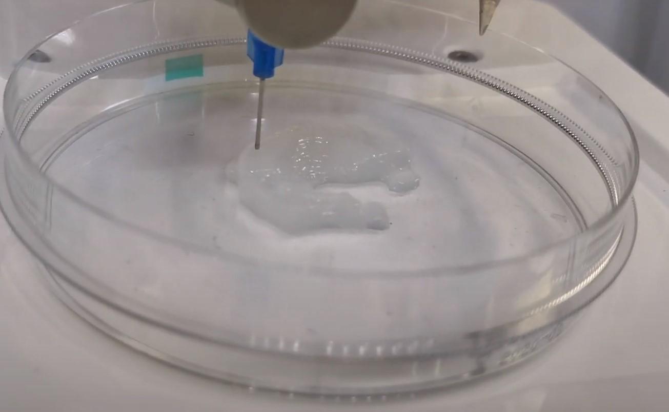 研究人员成功使用3D生物打印创建鼻软骨