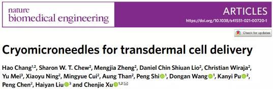 香港城市大学首创冷冻微针很容易地穿透皮肤,实现活细胞的负载与递送