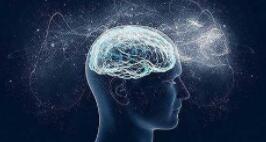 新一代脑图谱的绘制将为探究人脑,疾病诊疗带来新助力