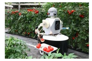 智能机器人服务于我们的生活,甚至是在农业发展方面取得了很大的帮助