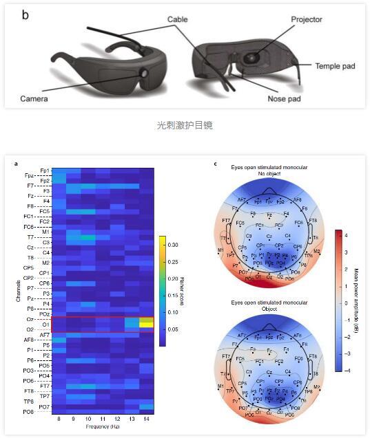 巴塞尔大学等让40年前失明的盲人恢复了部分视力