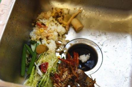 减少浪费!研究人员将废弃的果蔬废料回收成坚固的建筑材料