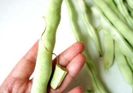 以四季豆为灵感的柔性机器抓手,能轻松抓住直径小于1毫米的物体