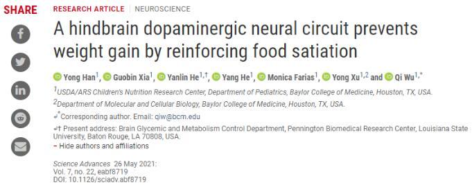 吴琦团队等揭示有效治疗肥胖症的新型靶向药物及相关作用机制