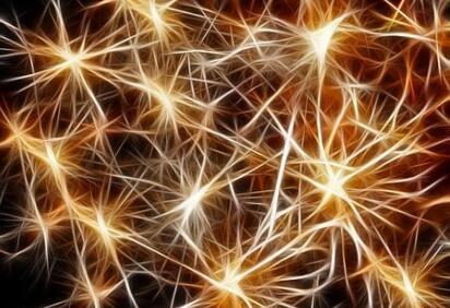 二號站登錄測速使用聚焦超聲的腦刺激技術,無需手術就能開關大腦中特定類型的神經元
