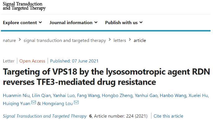 山东大学证明了溶酶体隔离机制在 MDR 发展中的新功能