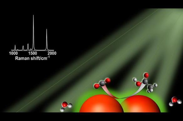 捕光納米粒子催化劑在尋求可再生碳基燃料方面具有良好前景