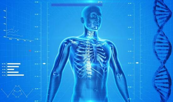"""科学家首次证实使用""""虚拟患者""""与传统试验有一样有效"""