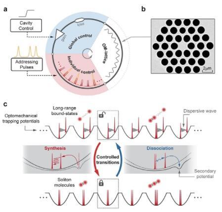 科学家开发了新型平行光孤子反应器:可以隔离和承载多个孤子