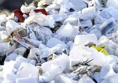 减少垃圾的新方法:牛胃中的微生物可以分解塑料