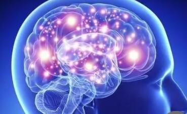 科学家开发了一种光开关分子:可直接在体内对大脑状态转变进行了光调制