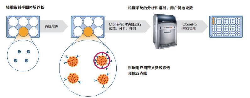 中药活性物质分子对接技术、高通量筛选技术、细胞膜色谱技术的原理、优缺点及应用