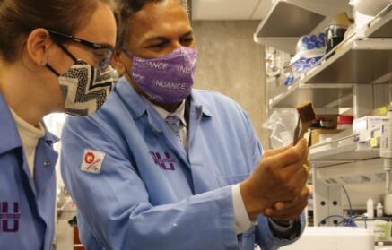 二号站登录测速吸收河道中的磷酸盐!西北大学开发出一种纳米涂层海绵状膜