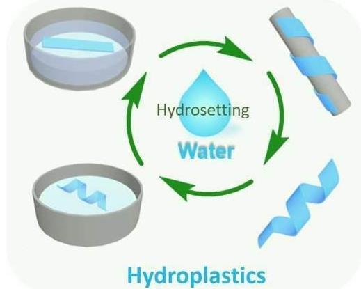 由纤维素和水制成的环保塑料来了 极大地简化了塑料制造
