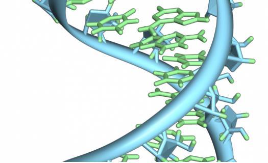 消除最大绊脚石,新工艺以更低的成本产生更多、更纯的 RNA