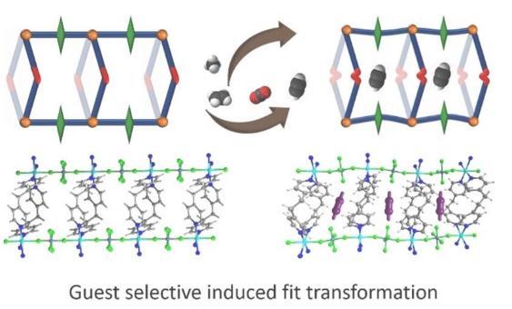 新型诱导拟合材料可实现乙炔乙烯的高效分离!
