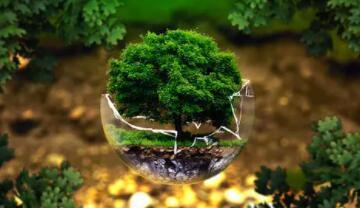 数字化转型推动低碳的可持续发展进程