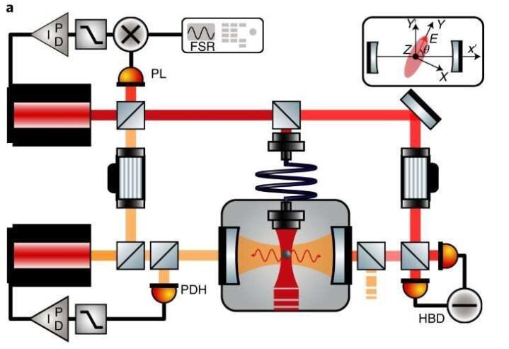 """室温下创建光机械纠缠的新希望!科学家以光学腔内悬浮纳米球实现""""矢量""""极化子"""